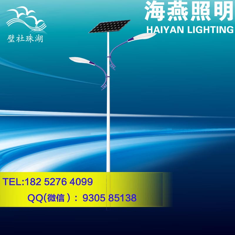 湖北新农村30W户外灯太阳能路灯