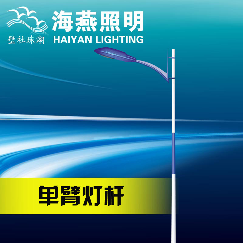 7 m single arm LED street light